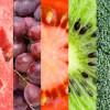 &lt;a href=&quot;http://www.lehegarat-dieteticienne.fr/bienvenue-1/&quot;&gt;Bienvenue !&lt;/a&gt;&lt;span&gt;<p>Plaisir de manger et diététique ne sont pas opposés !</p> &lt;/span&gt;